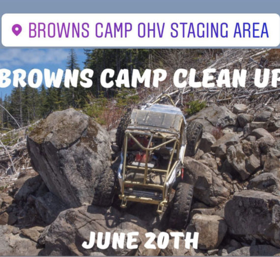 Time to clean up Browns!