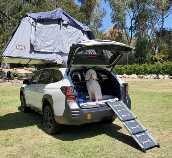 2022 Subaru Outback heads into the Wilderness